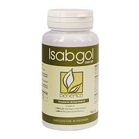 DAB 001 ISABGOL REGULAR 100G
