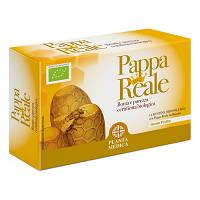 PLANTA MEDICAL Pappa Real Bio 14 bustine